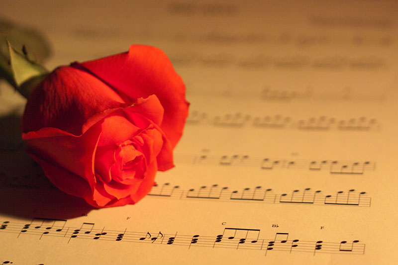 sheet music and rose