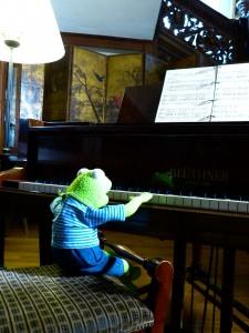 Kermit at piano (bad posture)